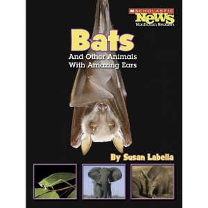Bats and other animals with amazing ears cover