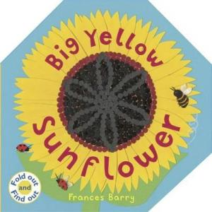 Big Yellow Sunflower by Frances Barry